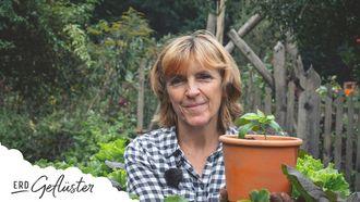 Wir ernten Samen von Sommerblumen | Erd-Geflüster mit Regina Dunst