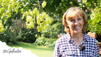 Herbstgemüse, Erd-Geflüster mit Regina Dunst