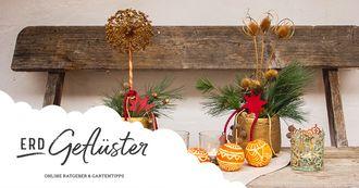Last Minute | Weihnachtsdeko aus Naturmaterialien | ErdGeflüster von Sonnenerde GmbH