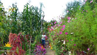 Riesengarten von Regina Dunst |Erd-Geflüster von Sonnenerde