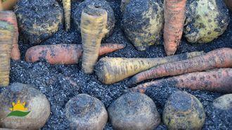 Regina Dunst zeigt, wie man Gemüse für den Winter richtig und sehr einfach einlagert