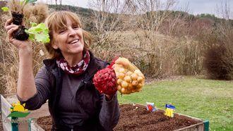 Pflanzideen für das Hochbeet, Erd-Geflüster mit Regina Dunst