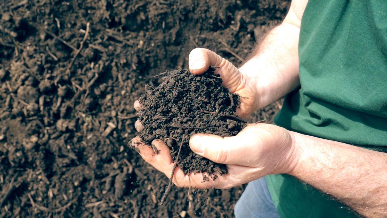 Gerald Dunst hält in der Hand fertigen Bio-Kompost