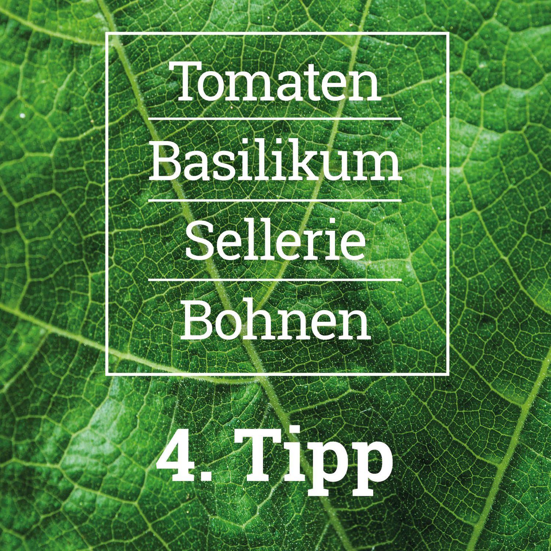 Pflanzideen für das Hochbeet - Tipp 4, Erd-Geflüster mit Regina Dunst