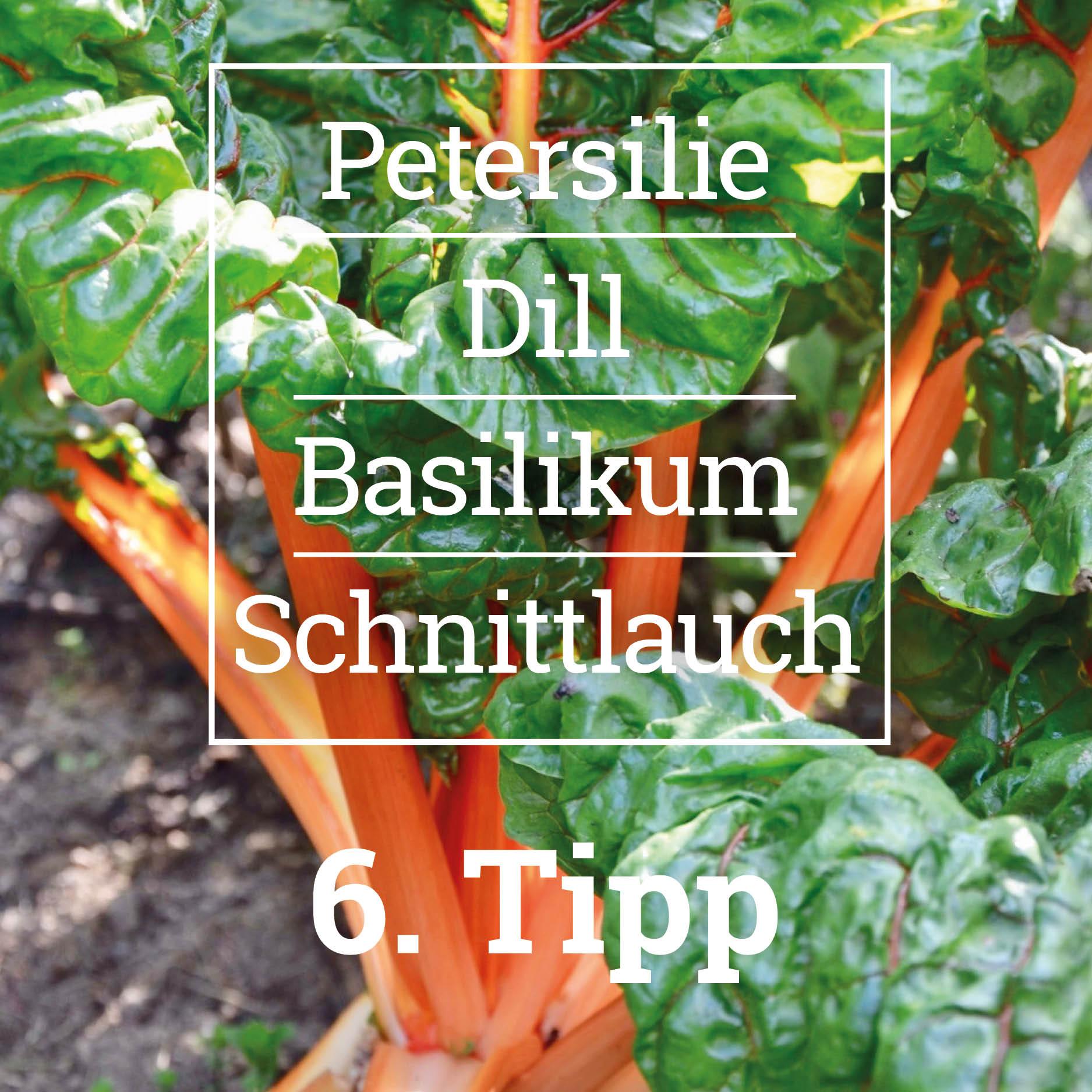 Pflanzideen für das Hochbeet - Tipp 6, Erd-Geflüster mit Regina Dunst