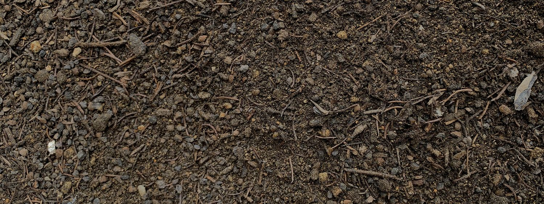 Bio Moorbeeterde von Sonnenerde, Detailfoto von der Erdenstruktur