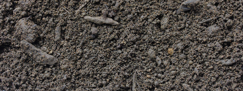Humus von Sonnenerde, Detailfoto von der Erdenstruktur