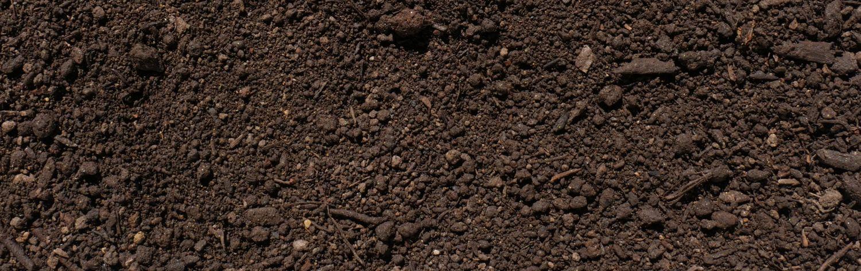 Kompost von Sonnenerde, Detailfoto von der Erdenstruktur
